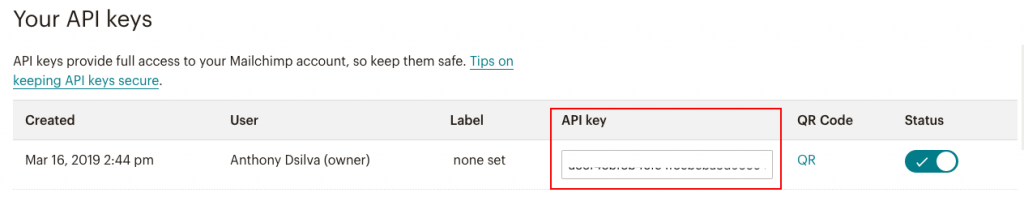 fig 6.5 - MailChimp Email Marketing: API Key
