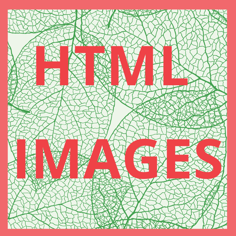 Image - HTML Images